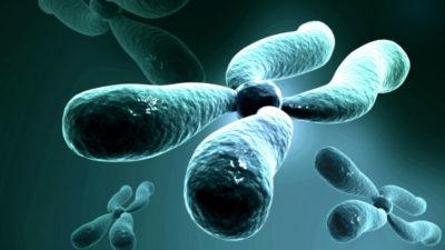 Prevención de las enfermedades raras hereditarias