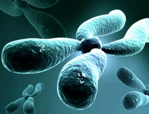El gran reto reproductivo de la genética es la prevención de las enfermedades raras hereditarias
