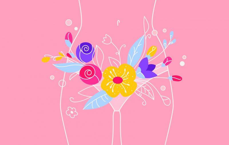 Ilustración del aparato reproductor femenino