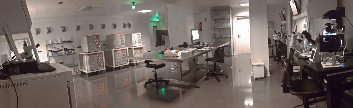 clasificacion embriones laboratorio fiv